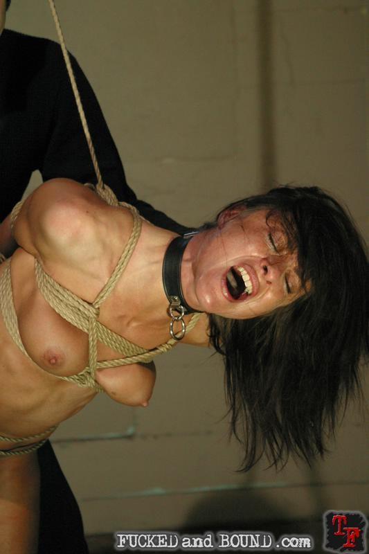 Cecilia vega sex slave porn