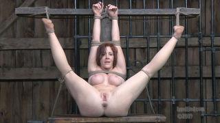 Bondaged babe getting hardcore sex