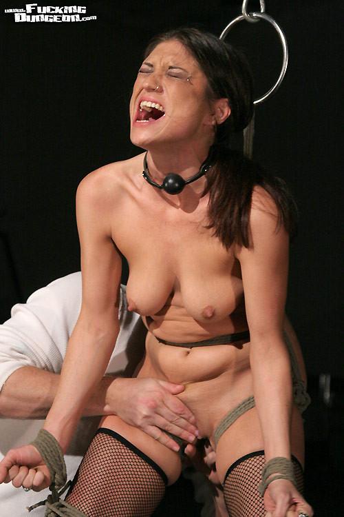 Couples having sex porn