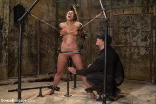 Dana Vixen natural big tits brunette bound her bod