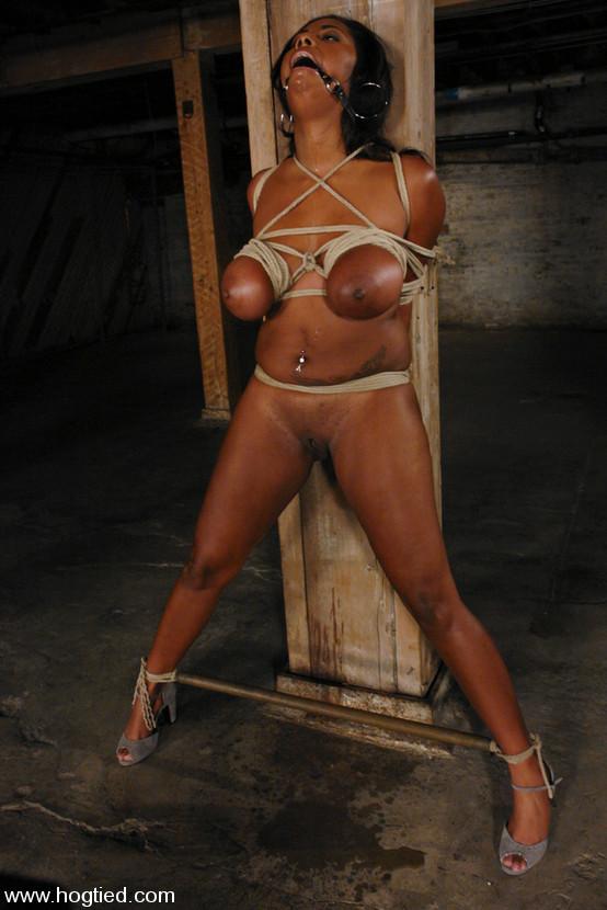 Black girl bound porn