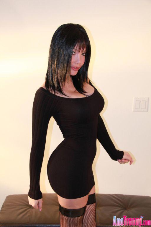 Big boob beautiful shemale