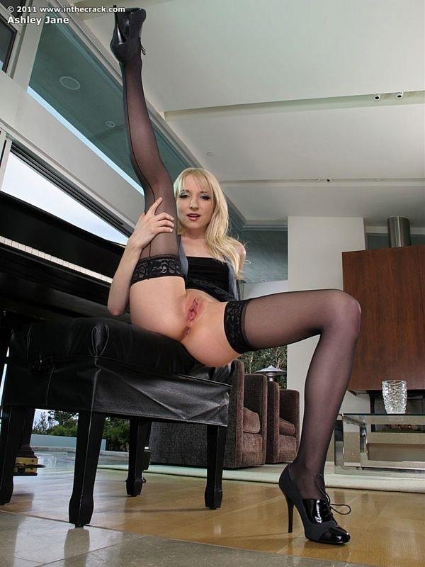 15efd916732 Ashley Jane in sexy stockings spread pussy closeups - Pichunter