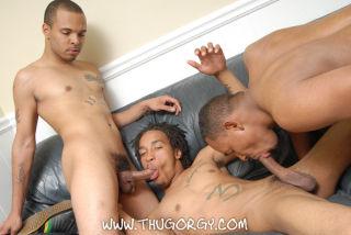 Black muscle gay makes deepthroat!