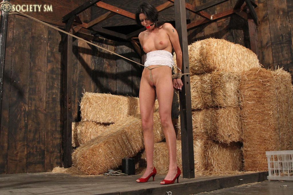 Sexy Nikki Daniels in forced orgasm Bondage.