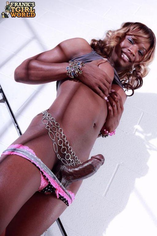 Beautiful Ebony Shemale Babe
