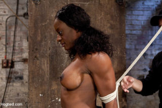 Ebony fitness enthusiast Ashely Star gets HogTied,