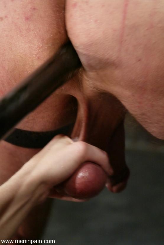 ... pain porn Harmony extreme bondage slave male nude Wild ...