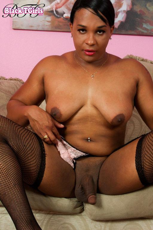 Curvy black shemale