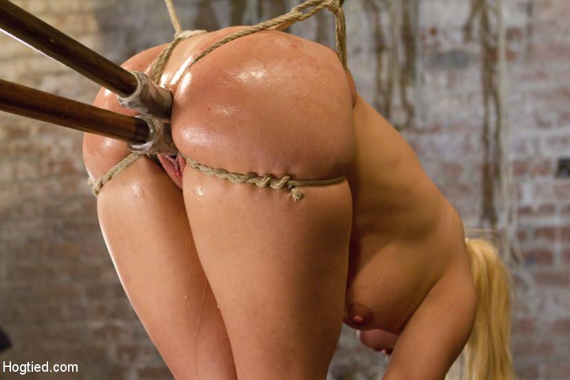 Porno sexo caballo