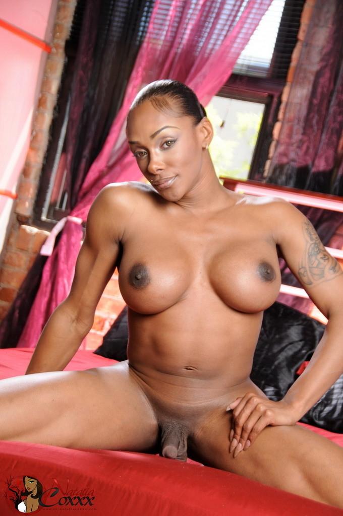 Best black african porn