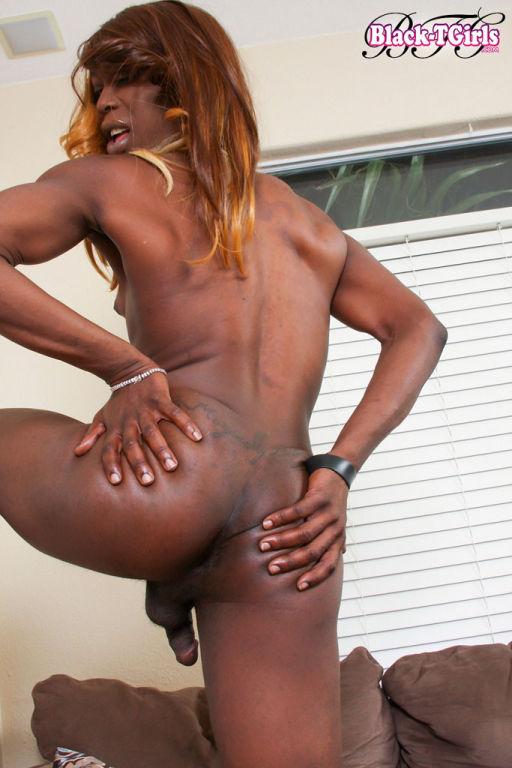 Big dick black tgirls