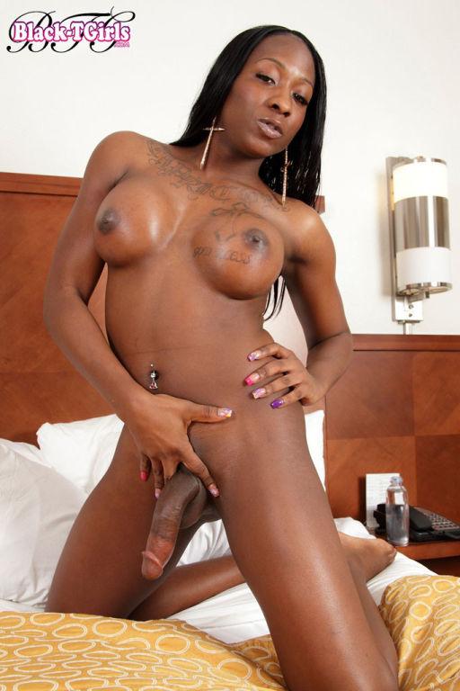 Ebony black shemale Sidney