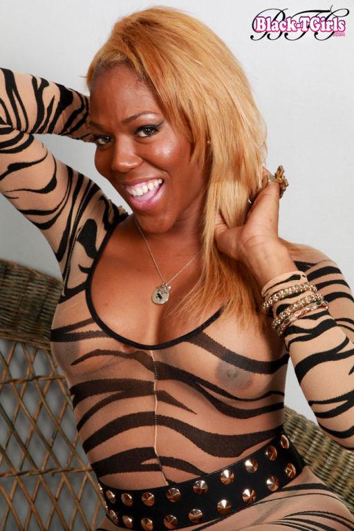 Black tgirl stripping