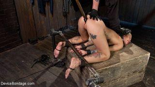 Kleio Valentien tattooed beauty bound and dominate