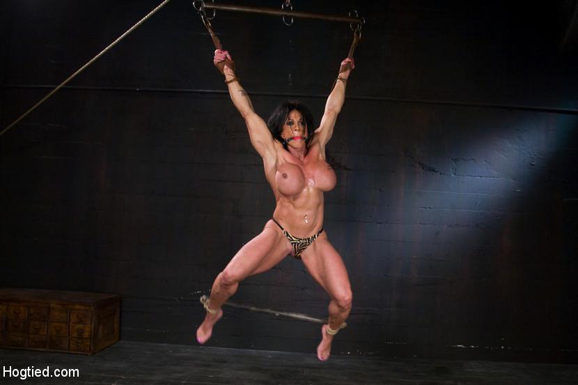 Lynn mccrossin panther pornstar