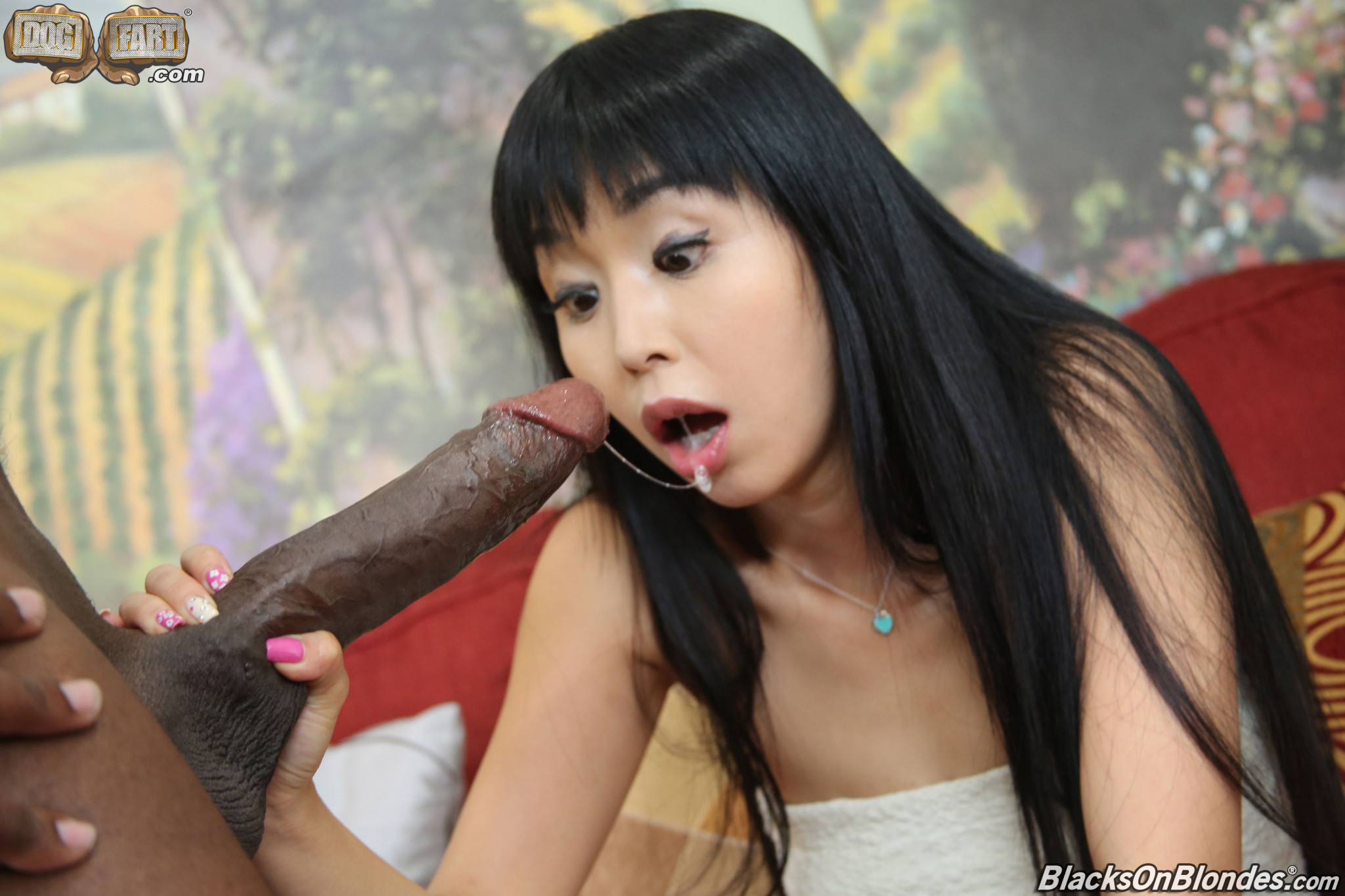 Asian girl black cock