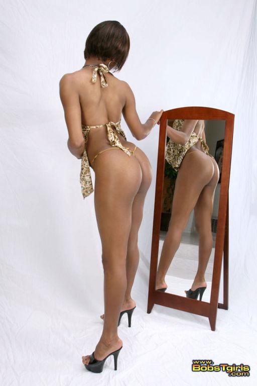 Ebony shemale nude