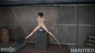 Mia Torro has a special love affair with bondage..