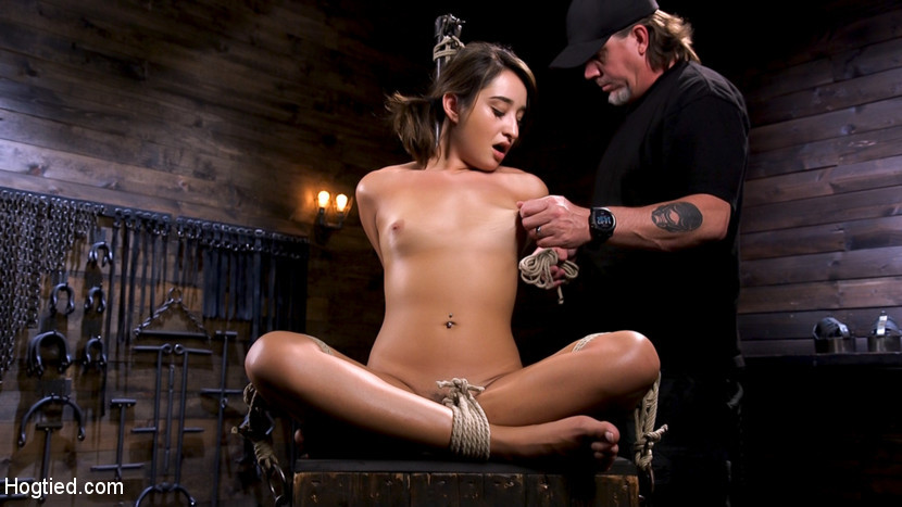 Katherine heigl sex porno