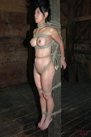 porn Tia Ling big tits -infernal restraints
