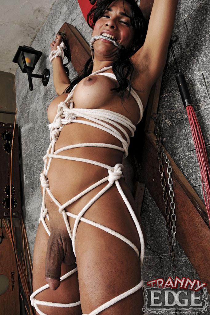 Ladyboy bondage