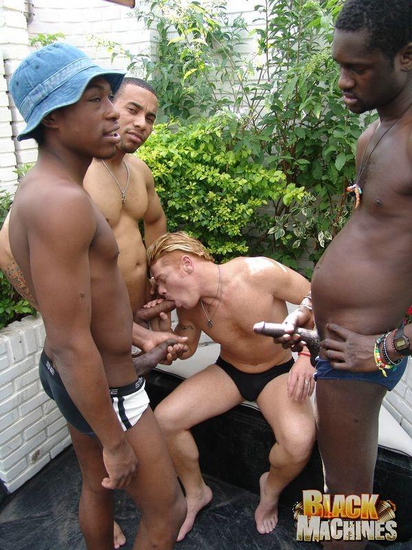 Dickgirl porn forum