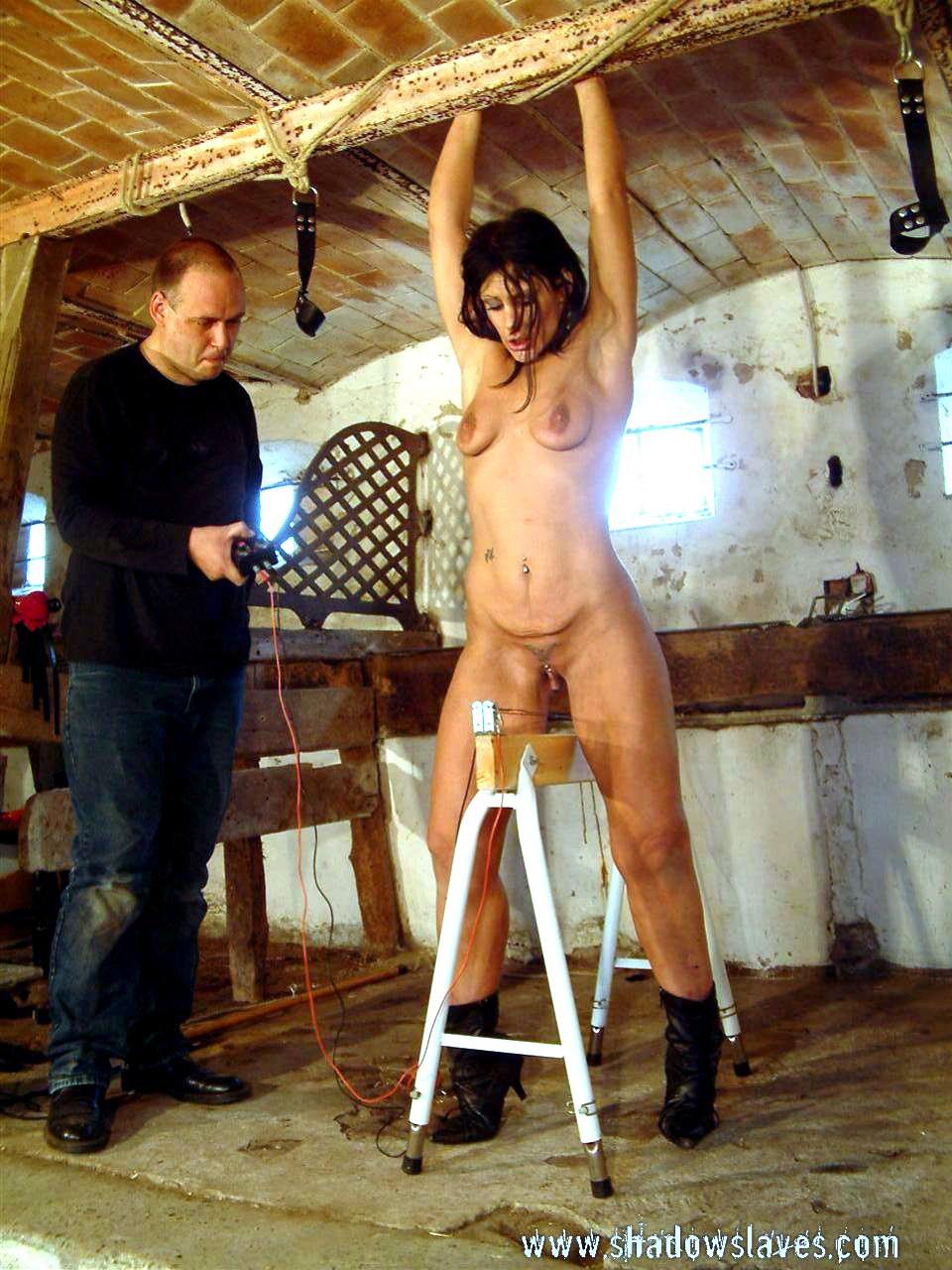 Wooden horse porn