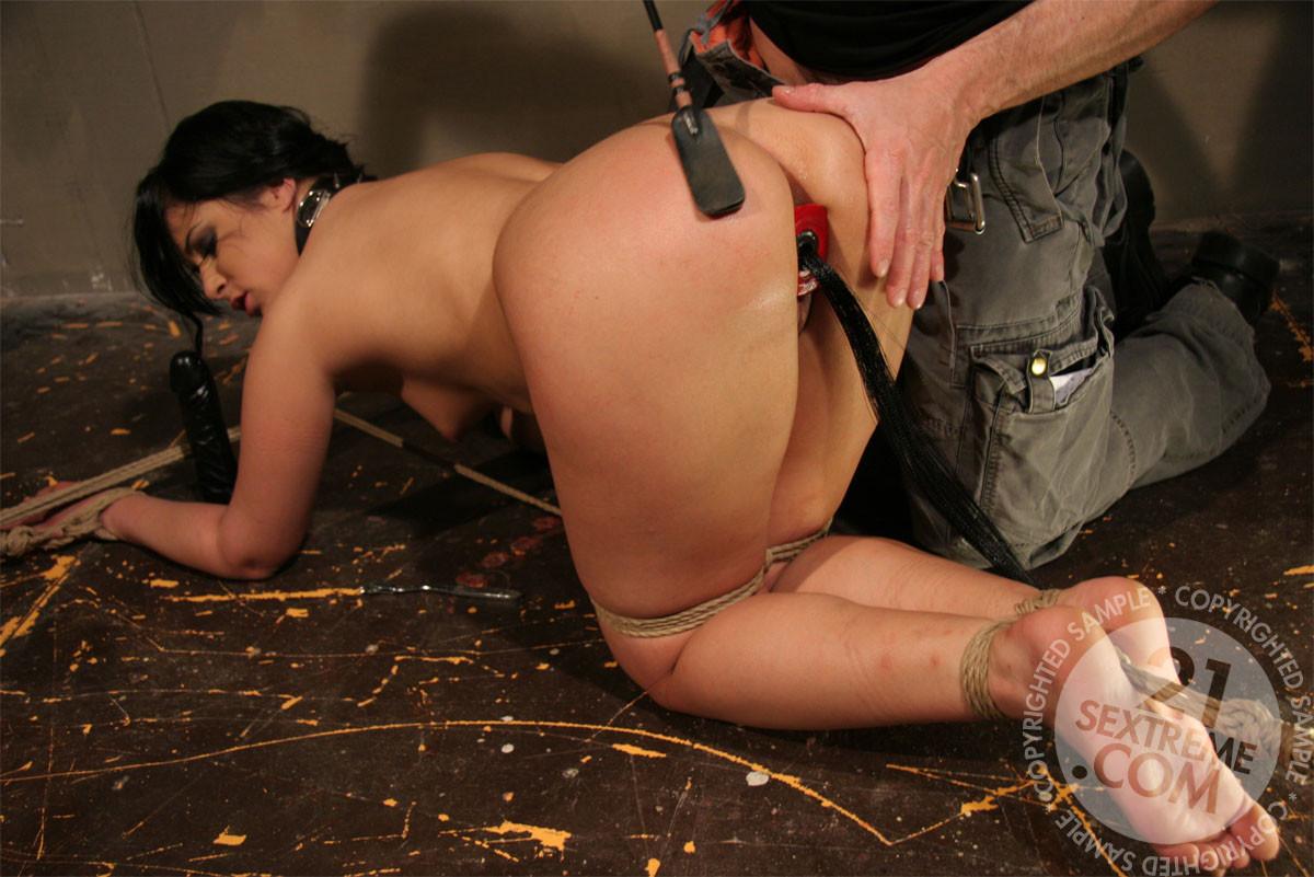 hogtied anal porn