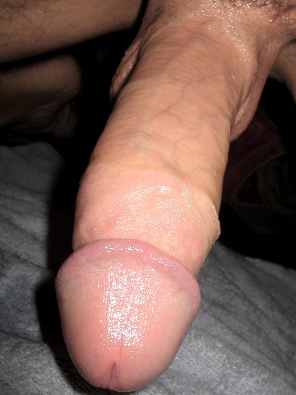 hentai fat tits