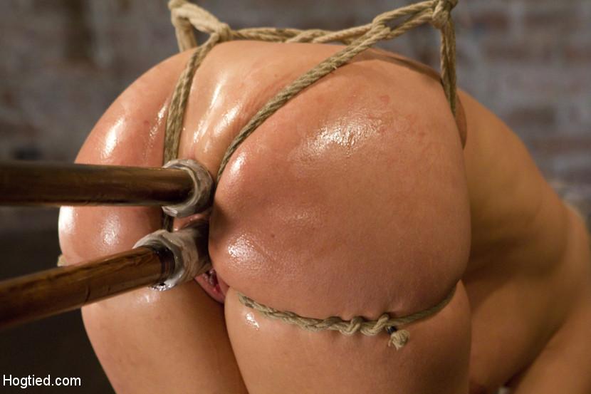 hogtied double penetration