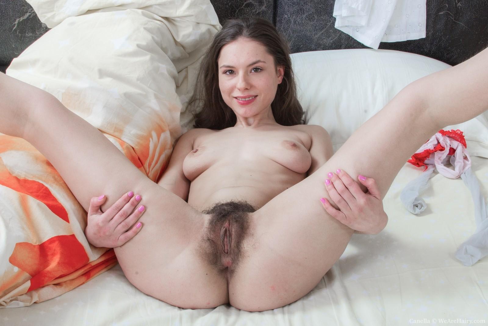 Hairy Pussy Big Tits Fuck