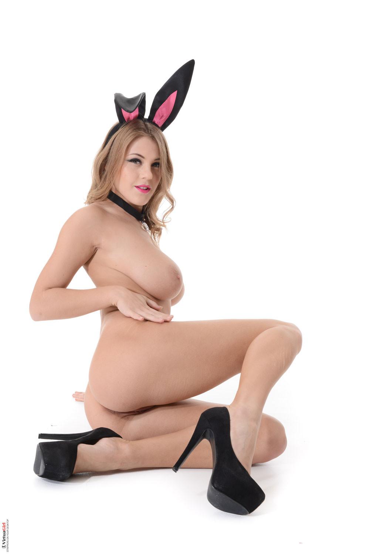 Bunny luv videos
