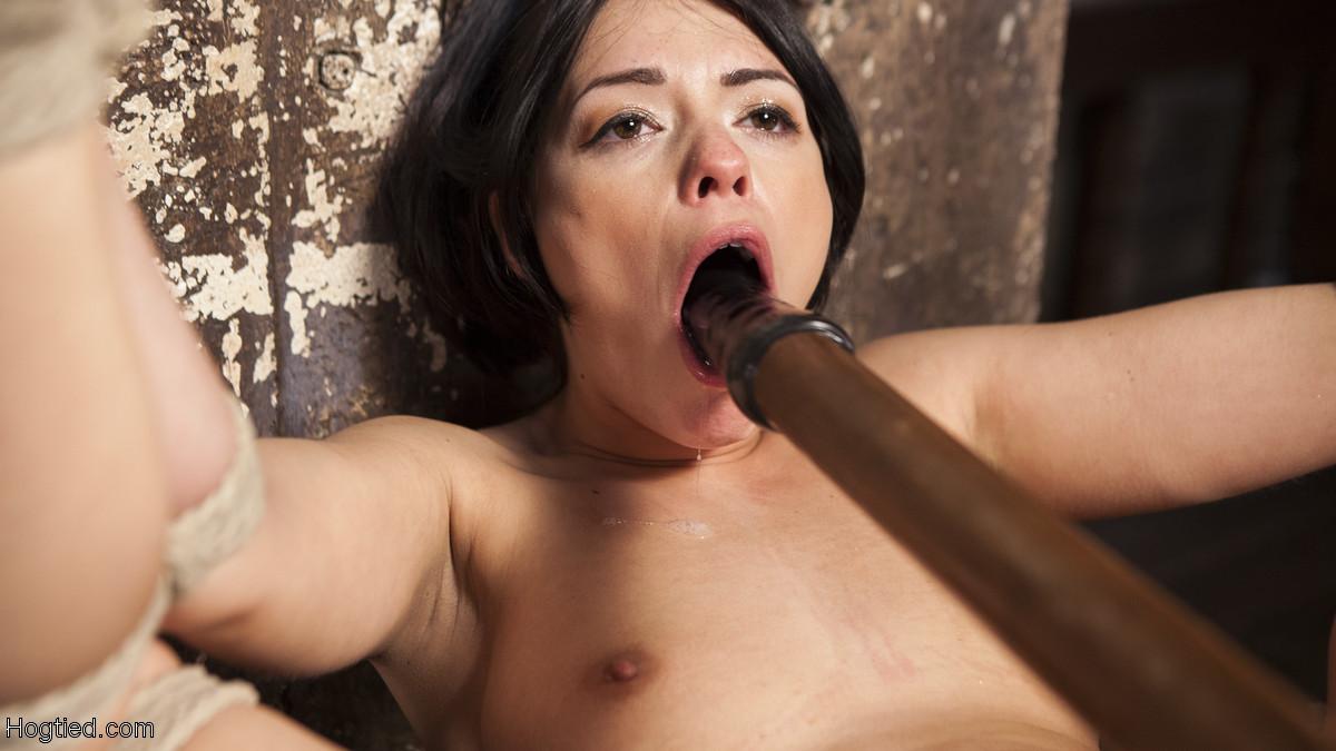 Dalush taste ava HD Sex