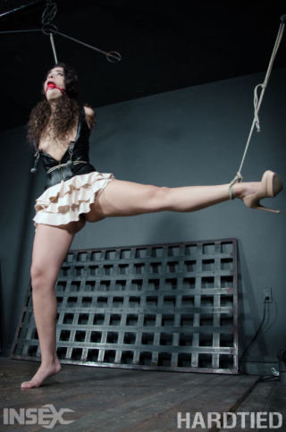 Victoria Voxxx    Hardtied    BDSM    Bondage    Extreme    Gagging    Hardcore    Slave    Tied    Torture thumbnail